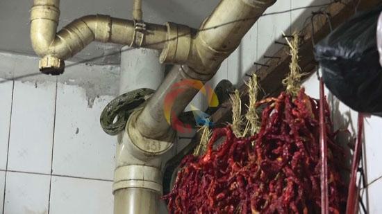 新能源二甲醚及石油液化气气站项目落户碧波工业园区