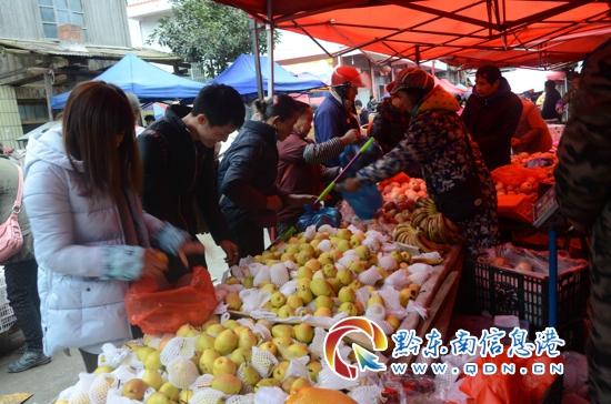 锦屏县交通整治亮铁腕 一天11名违法人员被拘留