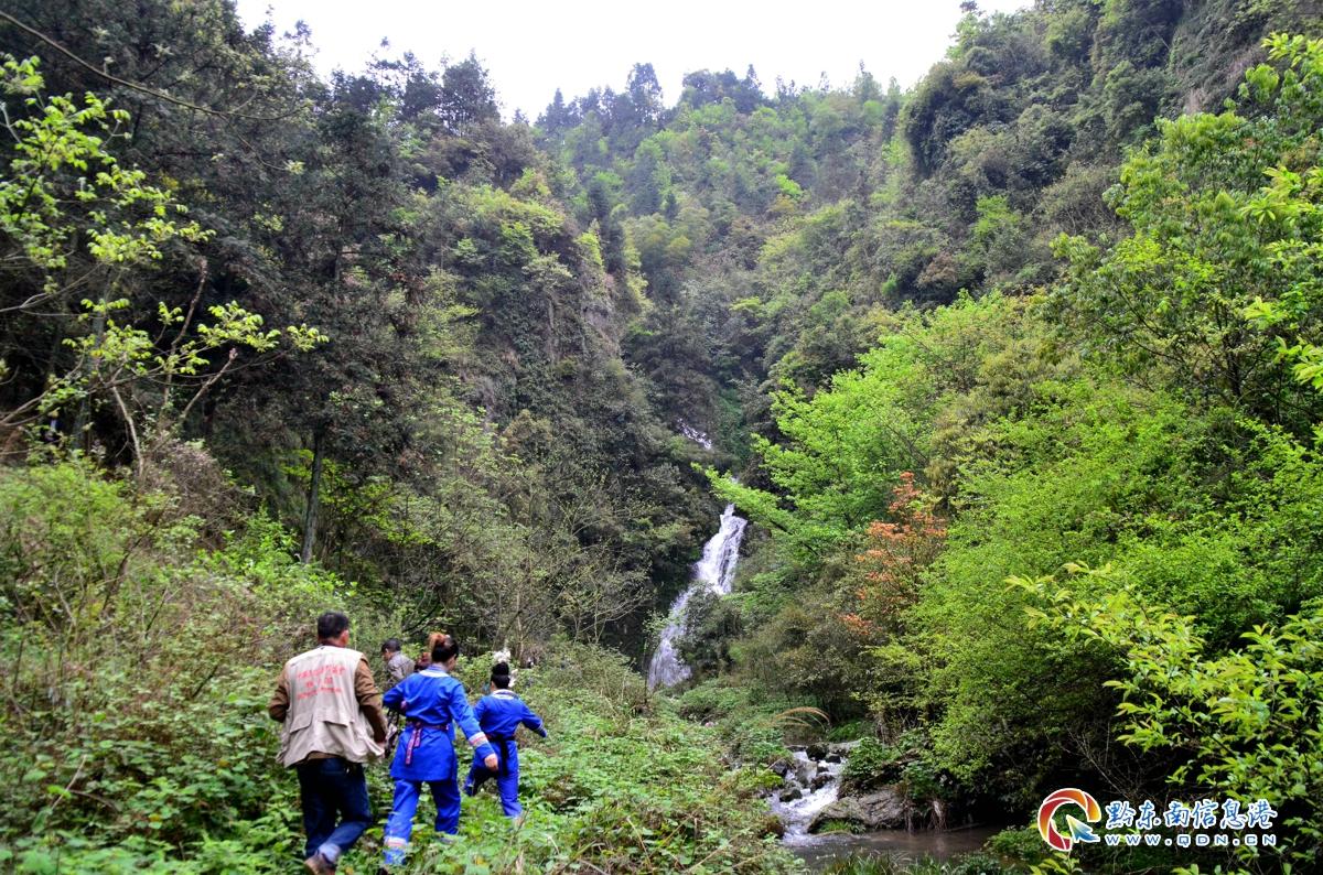 游客徒步去看瀑布