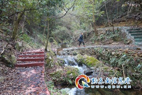 朱家山森林康养步道、舞阳湖环湖步道竣工验收